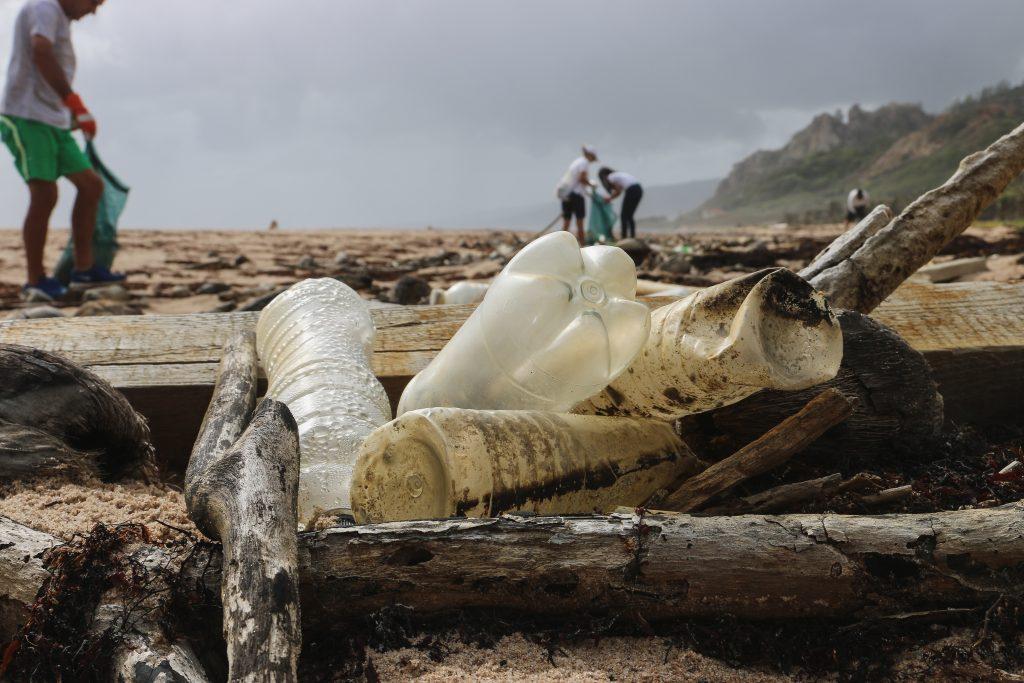 inquinamento plastica mare e coste