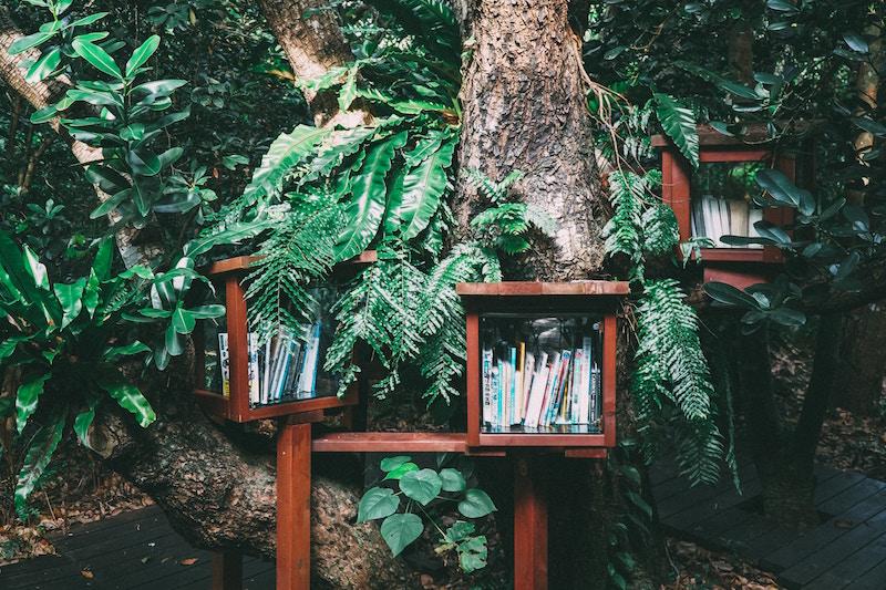 Letture-green-libri-estate-green