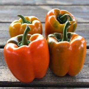 peperoni dolci biologici km0 firenze