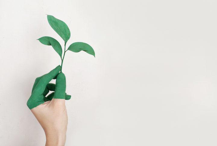 come-diventare-sostenibili