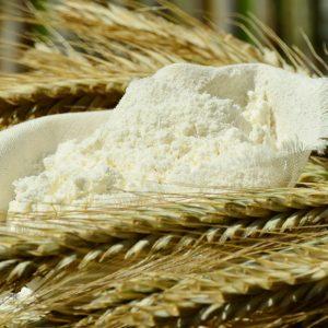farina-bio-firenze-km0