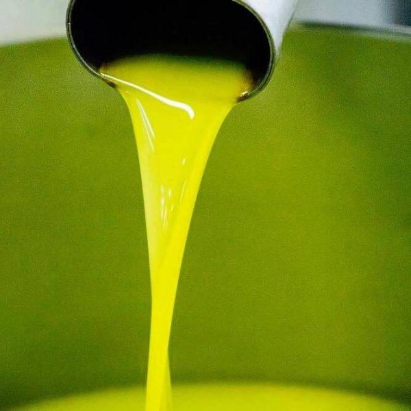 olio-nuovo-toscano