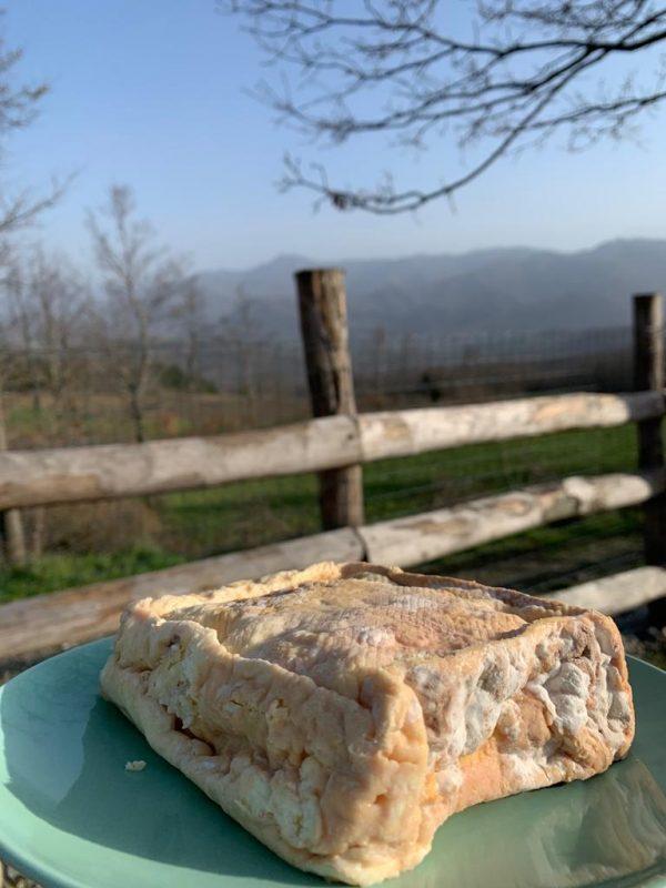 formaggio-taleggio-capra-biologico