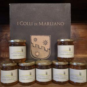 miele millefiori i colli di marliano