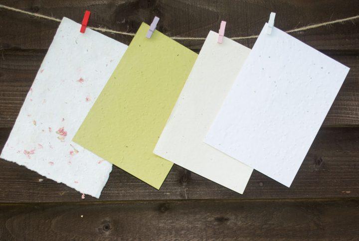 Come realizzare la carta riciclata con dentro i semi