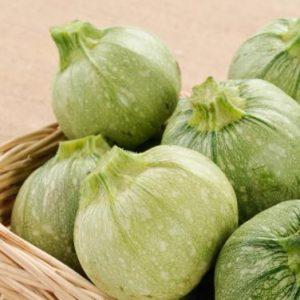 zucchine-tonde-biologiche-toscana