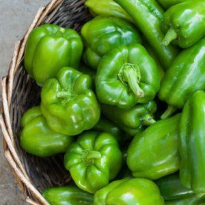 peperone-verde-biologico-toscana