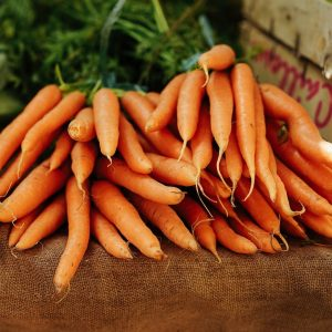 carote-biologiche-toscana