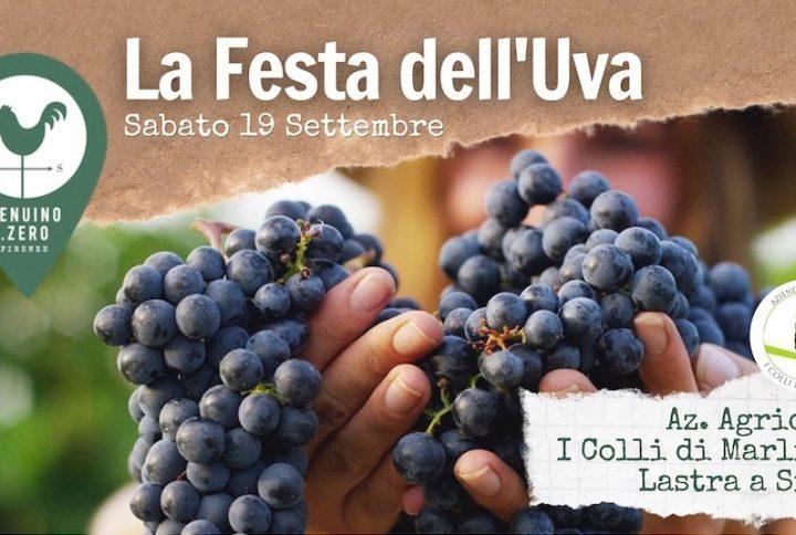 Festa dell'uva: la vendemmia sulle colline di Firenze
