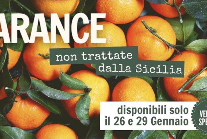Speciale della Sicilia: arance a domicilio a Firenze!