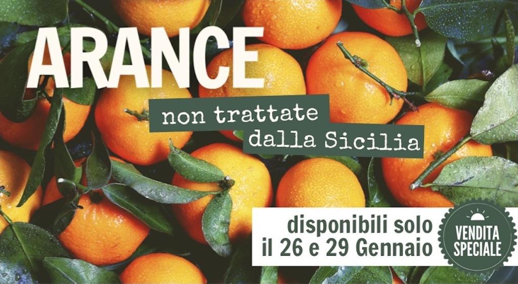arance-siciliane-firenze