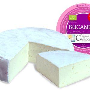 Bucaneve_camporbiano_brie_biologico