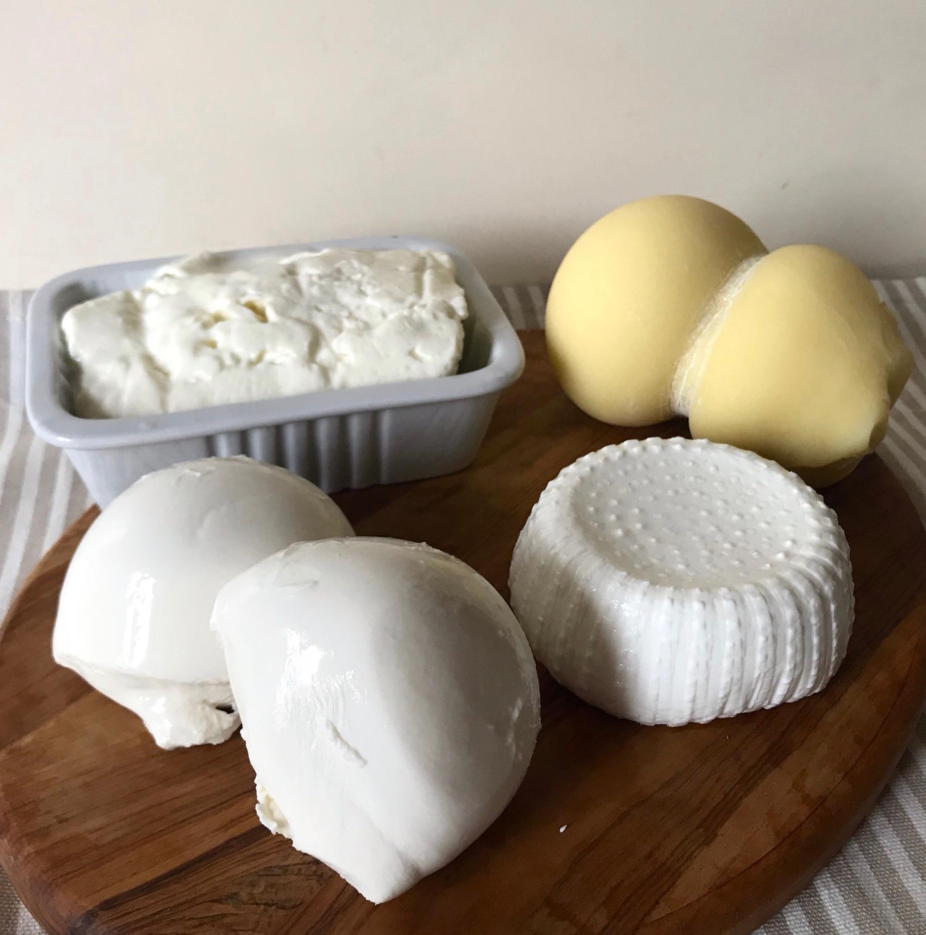 formaggi-biologici-camporbiano