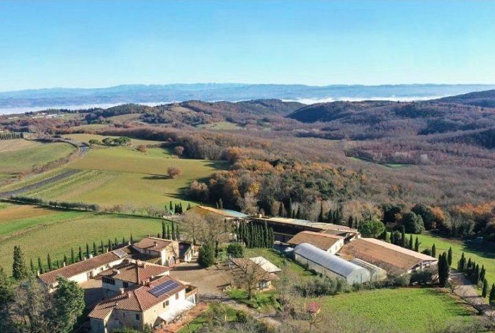 Poggio di Camporbiano, eccellenza biologica toscana