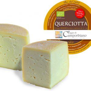 Querciotta-bio-camporbiano