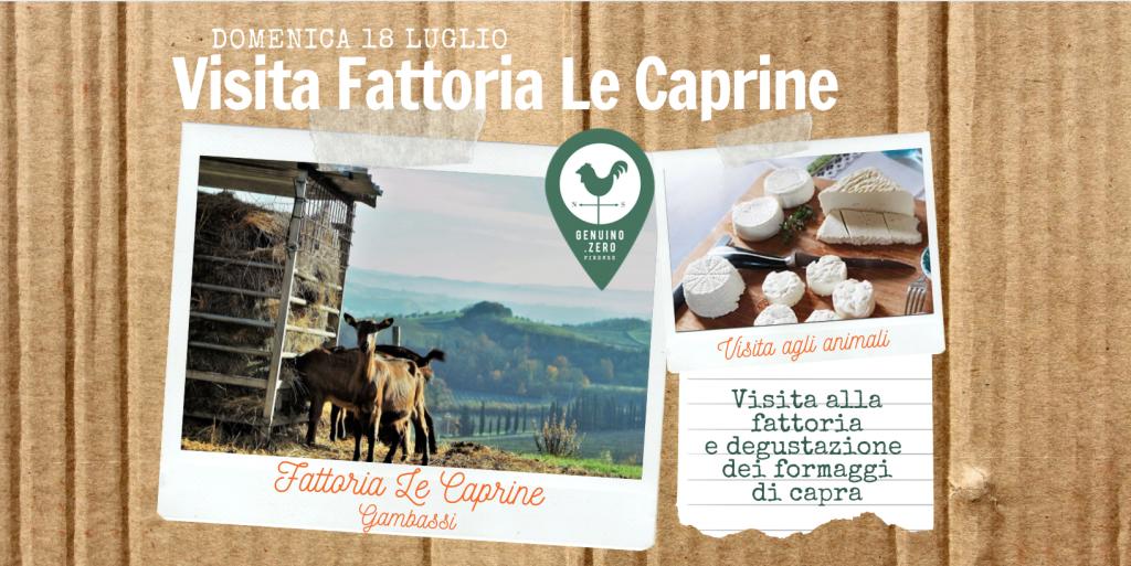 Visita fattoria capre