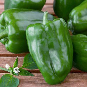 peperoni-verdi-biologici