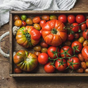 pomodori-bio-insalatari