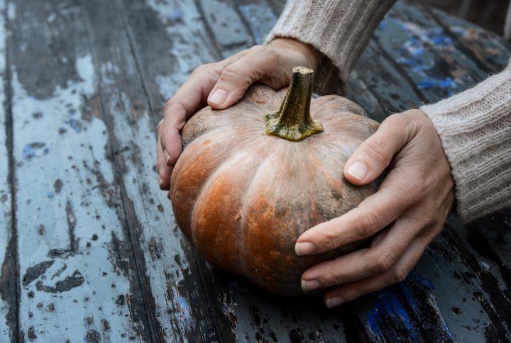 Zucca di Halloween Firenze