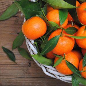 clementini-non-trattati