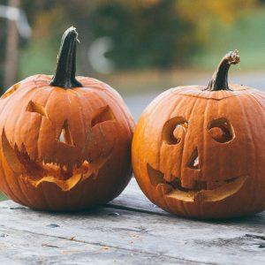 zucche-halloween-firenze-delivery-a-casa